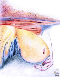 Gestation (sommeil)