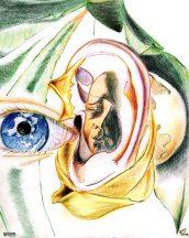 Gestation (orchidée)