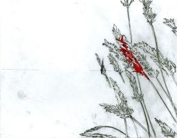 Pour une exposition collective (30ème anniversaire d'Illustration Québec)