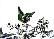 Sommeil (imago)