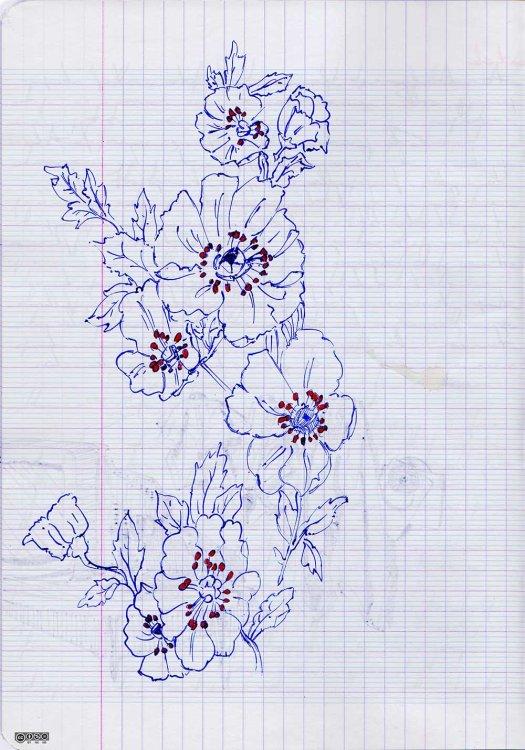 Carnet (fleurs)
