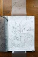 Fleuri (graphite)